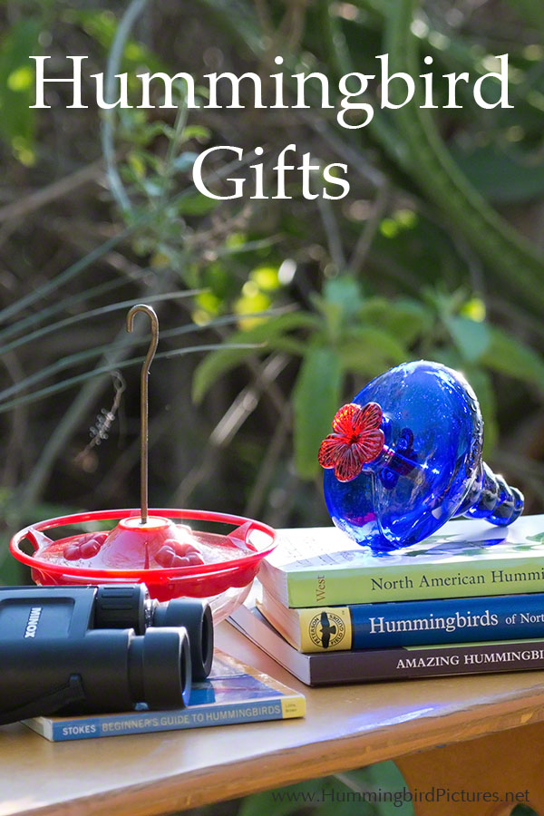 Examples of hummingbird gifts