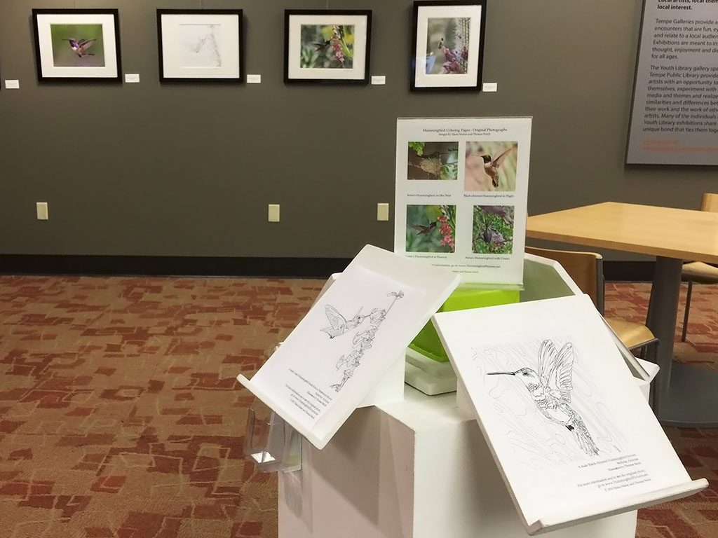 Hummingbird coloring pages by T.A. Strich displayed on a kiosk