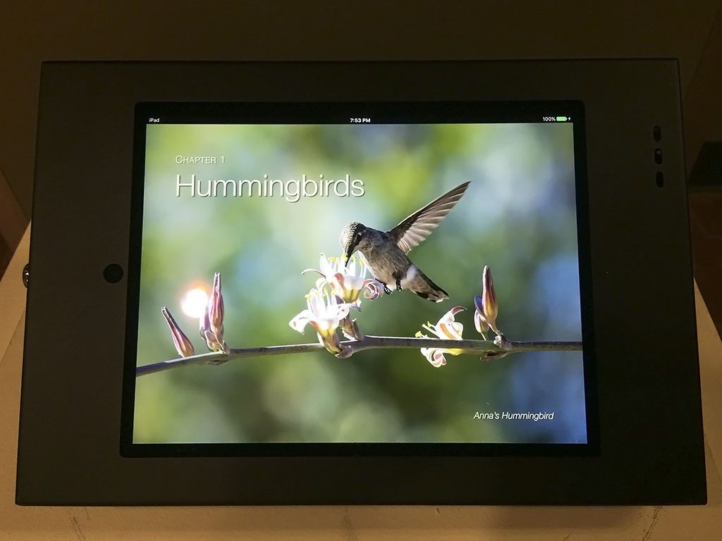 An image of Chapter 1 of Hover: Hummingbirds in the United States installed on an iPad at the Tempe Public Library