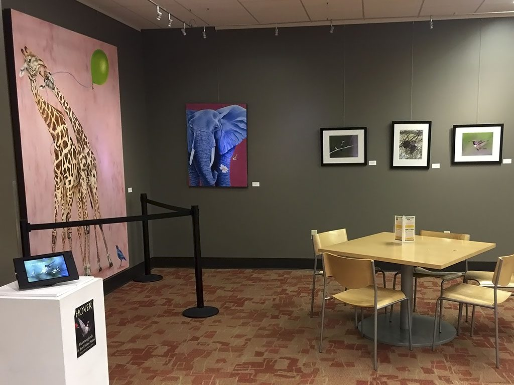 An installation view of the It's a Wildlife show at the Tempe Public Library